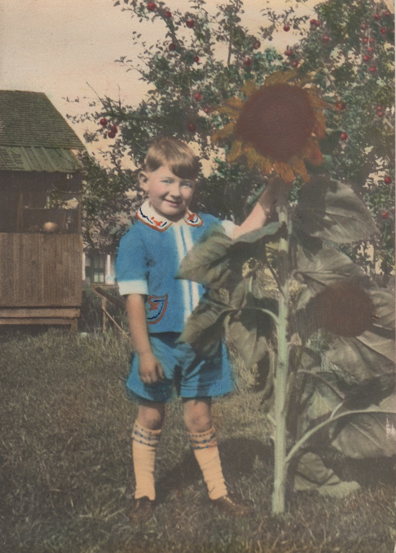 8. clyde grew this sunflower